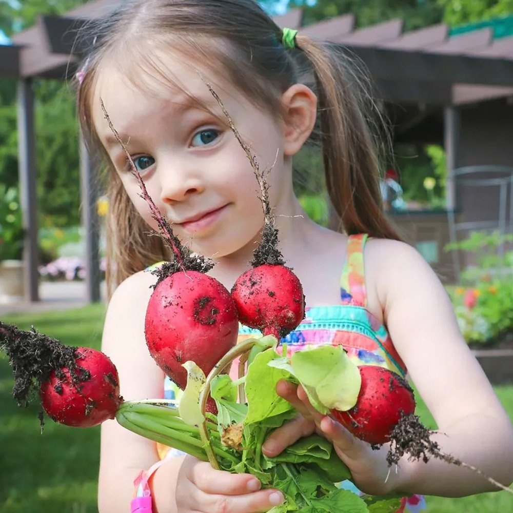 Child with vegetables in Children's Garden